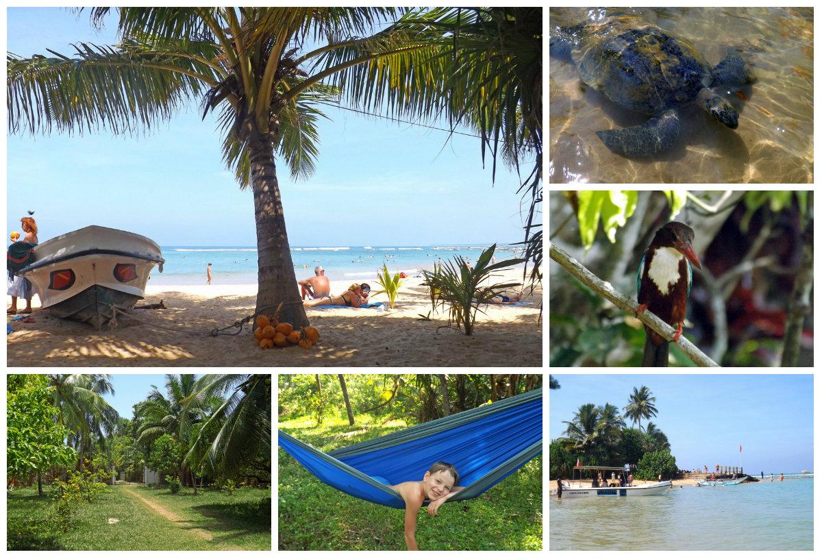 Yoga on the beach, seminars and training sessions on the beach in a tropical paradise